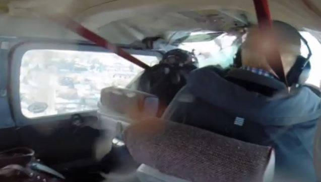 بالفيديو : إوزة تخترق طائرة أثناء تحليقها في الجو