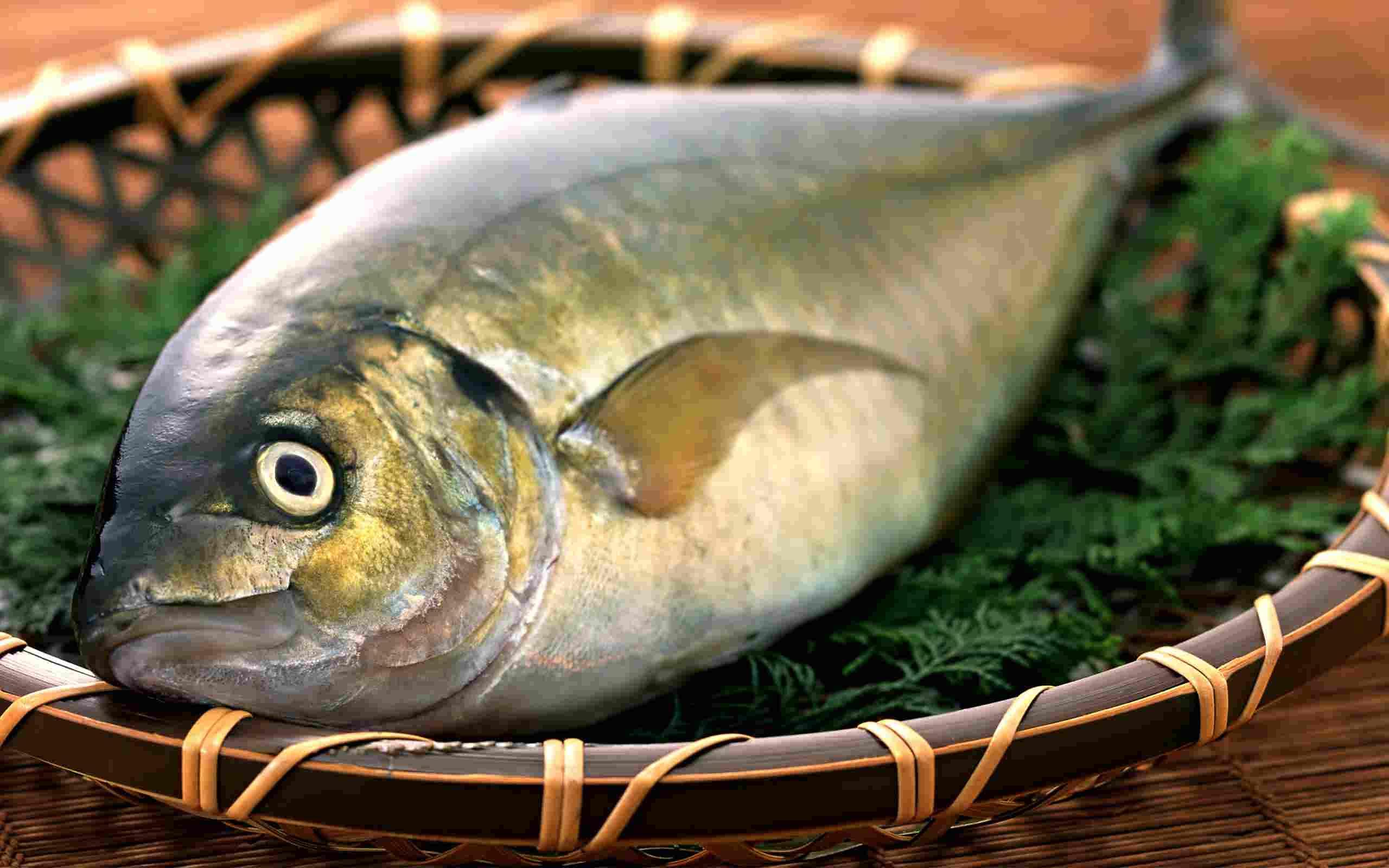 طرق اختيار السمك