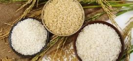 الأرز الأبيض والأرز البني .. وماهو الأفضل  ؟؟