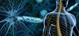 مرض التصلب اللويحي وتهديده للجميع