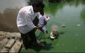 باكستاني يقدم ابنه للتمساح