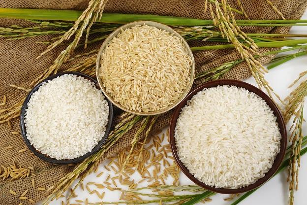 الأرز الأبيض والأرز البني